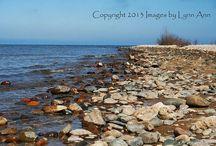 Michigan / by Lynn Markarian