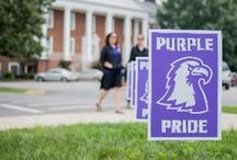 Purple Pride / by Tennessee Tech University