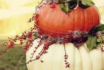 """Pumpkins / """"A pumpkin(Pie, cookie or Ice cream) a day, keeps the doctor away."""" / by Tracy Dunlap"""