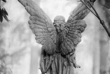 Angels Among Us / by Ann Cangelosi Ehler