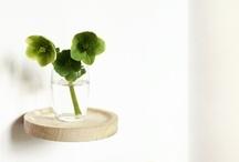Matikas / Plants / by Jalapeña