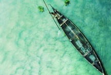 Boats / by The 99th studio