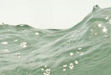 the sea, the sea.  / by Cara Tobe