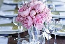 Wedding Ideas. / by Jillian Shepard