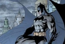 The Batman aka The Dark Knight aka The Caped Crusader aka The World's Finest Detective!!!!  / by Haya Hani