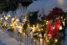 It's Beginning To Look A Lot Like Christmas! / by Emily Turkington Scheve