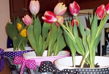 Mother's Day Ideas / by Becky Beamer