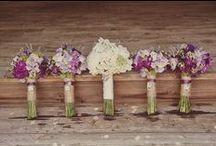 Wedding / by Nicole Harmon