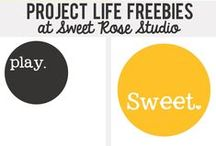 Project Life / by Katie {Sweet Rose Studio}