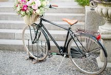 Bicycle / by Maria Paul
