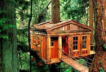Tree houses / by Camilla Lyle