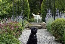 Gorgeous Gardens / by House & Home