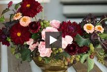 Fall Decorating Ideas / Get your home ready for autumn. Follow our Fall Decorating Ideas Pinterest board for tips throughout September and October. / by House & Home