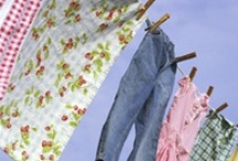 laundry on the line / ...laundry rooms... / by Cindy Willit