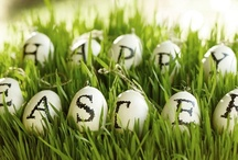Holiday :: Easter / by Heather Driscoll