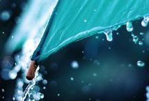 .umbrellas & rain. / by Maddie Rogers