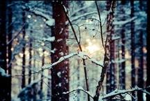 Winter Time / by Beka Stefanovic
