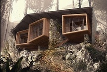 Cabins and Lodges / by Beka Stefanovic