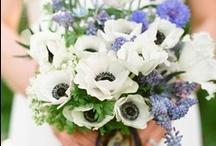 Bridal inspiration / by Kristen Simmonds