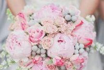 wedding / by Erika Kern