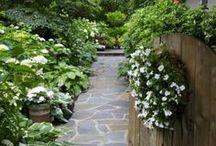 Gorgious Gardens / by Stephanie Loves Pinterest