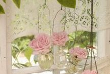 Embrace Lace / by Stephanie Loves Pinterest