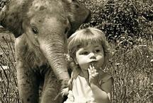 cutie pies.* / babies & animals / by Alyssa G.
