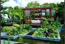 Garden Living / by Team Penley McNaughton Real Estate