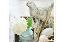 Spring / by Jenn Tavoletti
