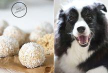 Puppy stuff / by Patti Campoverde