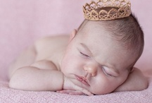 Photography - Newborn / Newborn photography sessions / by Amara Cohen Photography