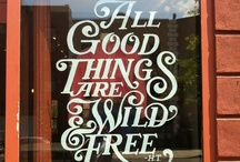 Shop Inspiration / by Kaitlyn Harun