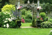 Backyard Sanctuary/Garden/Yard / by C.J. Rand