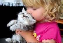 Kids and Cats / by Tamar Arslanian