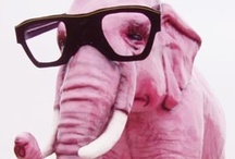 Pink Elephants / Any of various visual hallucinations sometimes experienced as a withdrawal symptom after sustained alcoholic drinking. I see pink! / by Maritza Lindsay
