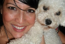 For the love of a poodle / Pet products, pics of my Maggie and other dog, poodle collections. / by Maritza Lindsay