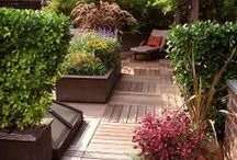 Deck Inspiration / by Krystle @ Color Transformed Family