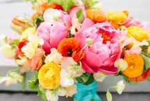 Bridal Bouquets / by Julia Whitbeck