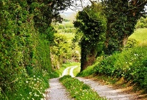 Ireland / by Imen McDonnell
