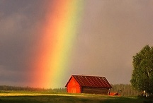Over the Rainbow / Who cares if you never find the pot of gold. They are just beautiful. / by Barbara Burr