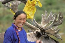 ☼ Life in MONGOLIA ☼  / by Phyllis Martin