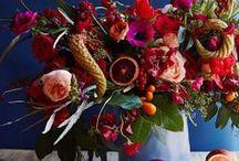 Flora Fauna / by Filmore Clark