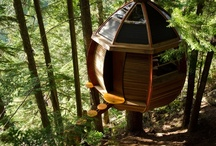 Tree House Hotels  / Spending the night in one of these is definitely high up on our To-Do list.  / by 10Best - A Division of USA TODAY Travel