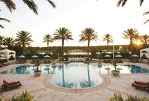 Orlando / Orlando is equally exciting for families or couples.   / by 10Best - A Division of USA TODAY Travel