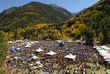 Music Festivals / by 10Best - A Division of USA TODAY Travel