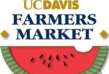 Davis Eateries / The eating options in Davis are endless, you will never go hungry!  / by UC Davis