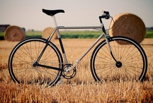I Want to Ride My Bicycle / From beach cruisers to mountain bikes...every aggie knows how to ride in style / by UC Davis