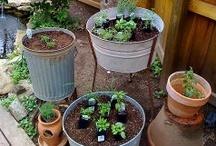 Gardening / by Kundry