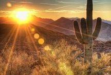 Desert / by YeliCit GM