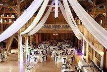 Wedding / by Hillary Faulkner